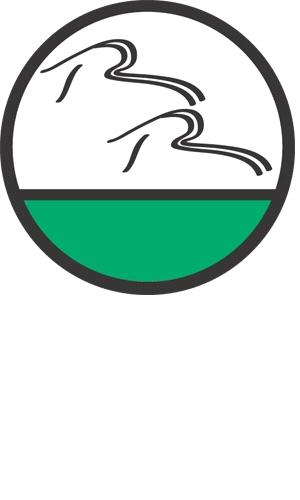 rockwood_adventures_logo